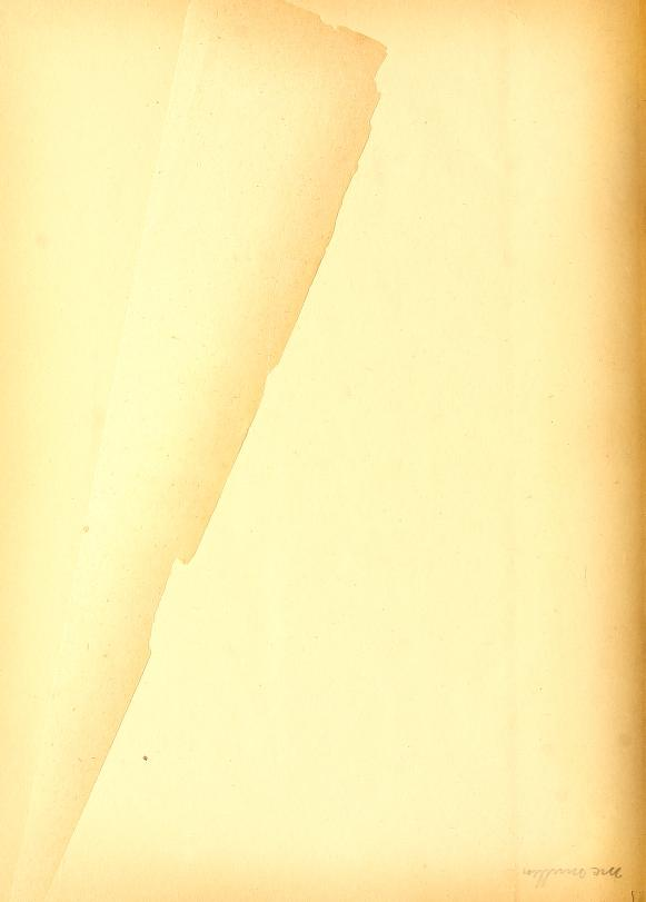 Leaf0246_s4