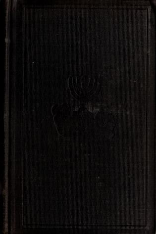THE NEW TESTAMENT HISTORY by Vivien Alcock